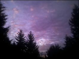 Purple Morning Sky by death2normality