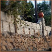 Wall and green by quevedo3