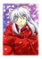 New Inuyasha to May by lince