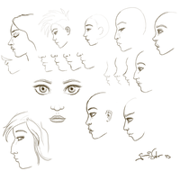 Sept 19 Studies by mrTwisby