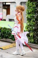 Asuna LN by MilanaPloy