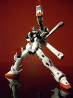 MG Crossbone Gundam Full Cloth by Platinum-Disco