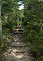 Path to Gros Morne 1 by LucieG-Stock
