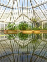 Glasshouse Symmetry by geekySquirrel