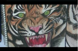 the last tiger (for gcse art) by abtheartist