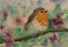 Watercolor and Ink #27 -European Robin - Bird by Oksana007