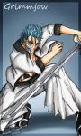 Grimmjow by Amand4