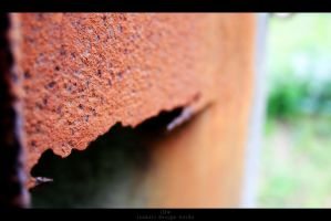 Rust by iso-50