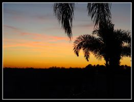 Florida Sunset by Just-Anyes