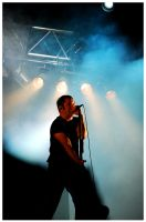 NINE INCH NAILS 09 Roskilde 05 by acidDOTdica