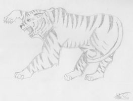 Tiger Grayscale by Wolfchill13