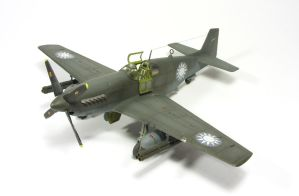 1/72 P-51C Mustang I by Zero-Cannard