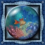 Gift Box Marble - VG Fish by Velvet--Glove