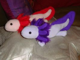 Purple Axolotl by Rayaya