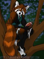 OSC: Red Pandamonium 3 of 3 by JakkalWolf