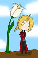 Edward Elric Card by Kina-Maaka