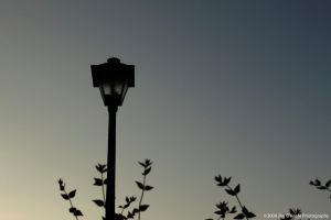 A light post by JimOKeefePhotography