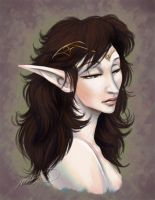 Lady Fiell: Commission Portrait by SBGothik