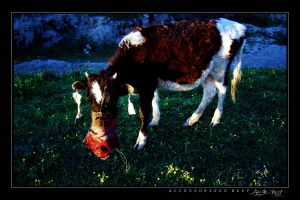 Accessorized Beef by avotius