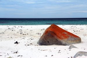 Bay of Fires, Tasmania, Australia by anthonyyager