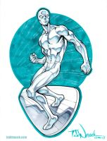 Silver Surfer by ToddNauck