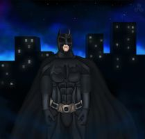 The Hero Gotham Deserves by Jeleane