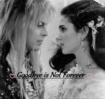 Goodbye is Not Forever: Second Cover by Tarnisis