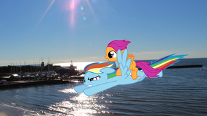 Scootaloo and Rainbow Having a Day at the Beach by Doctor-Derpy