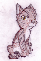 6. Tigerclaw by sparkythepichu