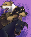 four lovely ladies by shelzie