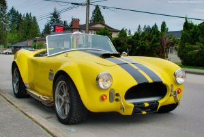 Black on Yellow Cobra by SeanTheCarSpotter