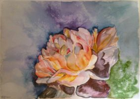 Watercolor Flower by phoenisse