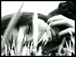 Sleeping In The Grass by Malleni