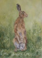 Brian the Hare. by SueMArt