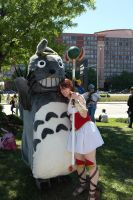 Totoro and Codex by TenderCosplay
