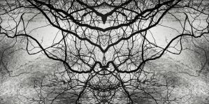 neuronal. noir by Migrena