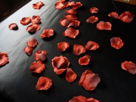 Rose Petals Stock 1 by Melyssah6-Stock