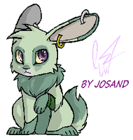 Kinu the rabbit by josand