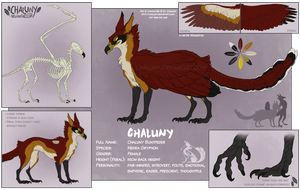 Chaluny Reference - Part I (Feral) by Chaluny