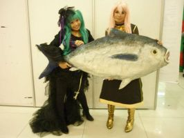 HobbyCon 2011:Hatsune Miku, Megurine Luka and tuna by elissamelissa96