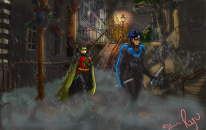 Birds On Patrol by Ryuzaki-Lawliet