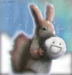 snowball squirrel by hummeri9