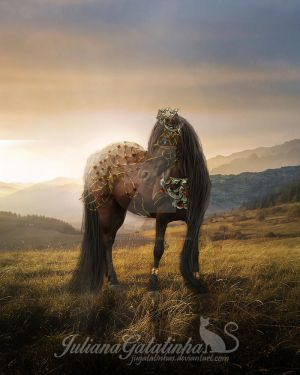 Enchanted Horse by jugatatinhas