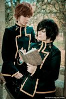 Lelouch and Suzaku by dahcyst