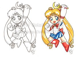 Indiana Comic Con Commissions -Sailor Moon 2 by ExiledChaos