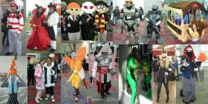Fanime Cosplayer Collage 3 by ShellMinded