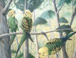 Parakeet Fight by Penguinton