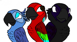 Charaters for my new story ^.^ by SorrowStars