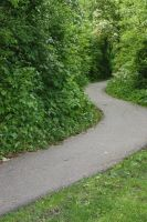 Path into the park 2 by photohouse