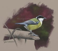 Great Tit by makangeni